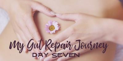 My Gut Repair Journey – Day 7