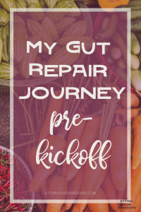 my gut repair journey pre-kickoff day