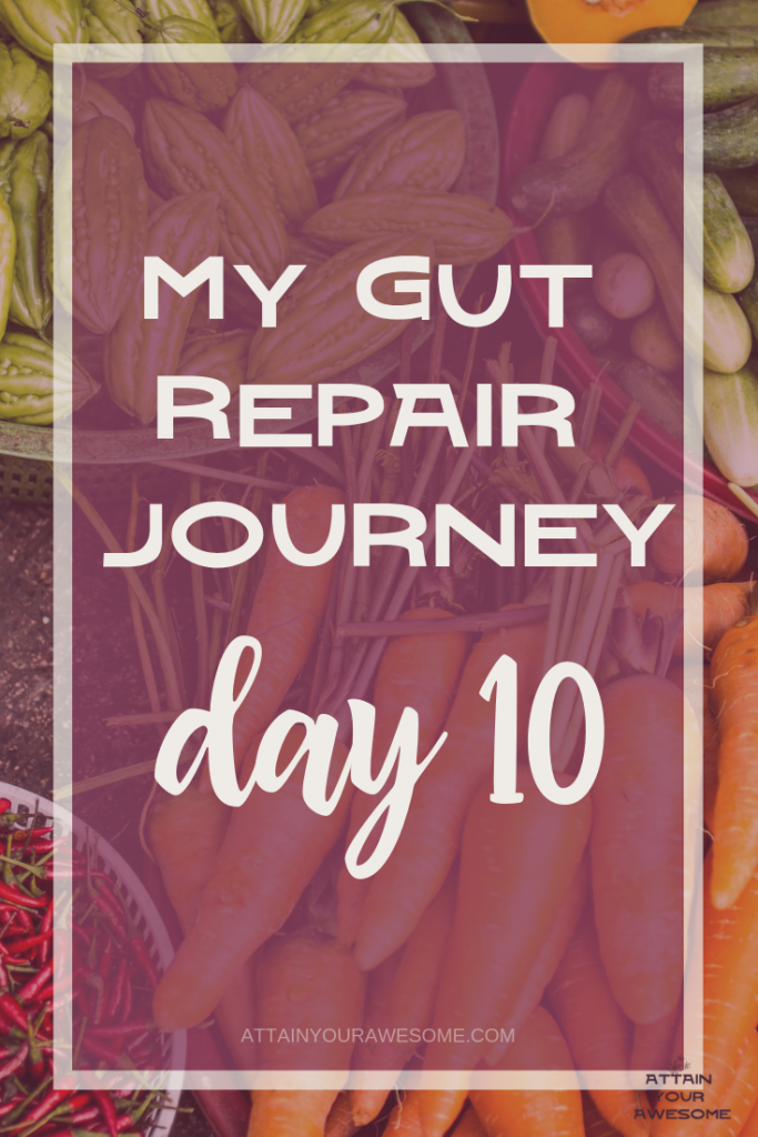 my gut repair journey day 10