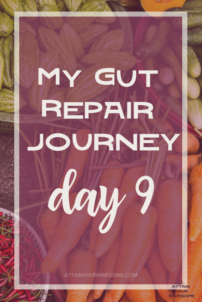 my gut repair journey day 9